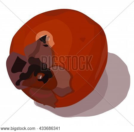 Persimmon, A Round Orange Fruit With A Four-leaf Stem And Juicy Pulp. Realism Style. Vector Stock Il