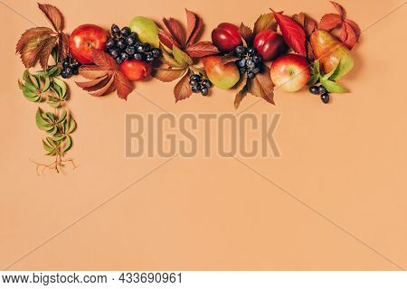 Autumn Seasonal Fruits Apples Pears Grapes Leaves Pastel Brown Background. Thanksgiving Harvest Conc
