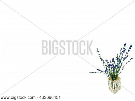 A Bouquet Of Blue Lavender Flowers In A Glass Vase On A White Background. Lavandula Angustifolia. A