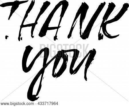 Thank You. Handwritten Dry Brush Inscription. Hand Drawn Modern Lettering. Thank You Card. Vector Il