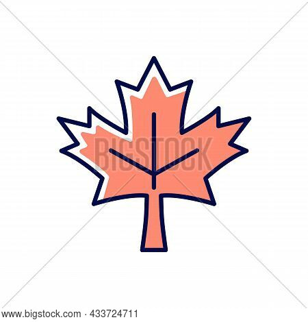 Maple Leaf Rgb Color Icon. Common Used Symbol Of Canada. Historic Sign And Landmark. Central Element