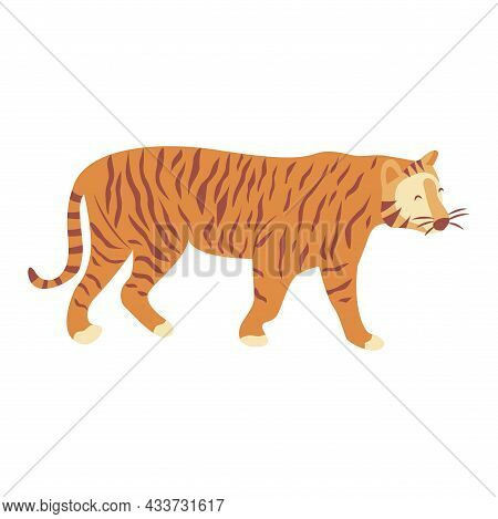 Tiger Is Coming. Noble Wild Striped Feline, Fast And Agile Animal. Colorful Vector Isolated Illustra