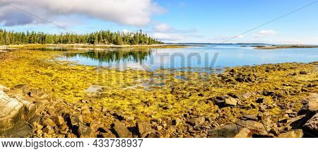 Panoramic view of Acadia National Park coastline in Maine at low tide