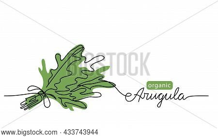 Arugula, Rucola Bunch Simple Vector Drawing. One Continuous Line Art Border With Lettering Arugula