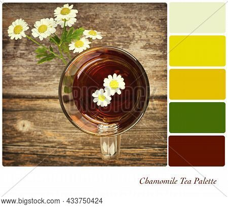 Top View Of Chamomile Tea In A Glass Cup With Flowers, On An Old Wood Table. In A Colour Palette Wit