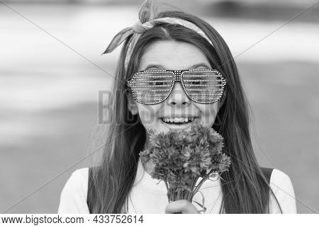 Fancy Girl Fresh Cornflowers Bouquet Summer Season, Romantic Surprise Concept