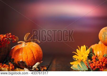 Harvested Harvest Of Pumpkins And Viburnum On Wooden Background