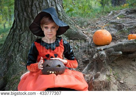 Beautiful Girl Witch Conjures. The Girl Is Dressed In A Witch Costume For The Halloween Holiday. The
