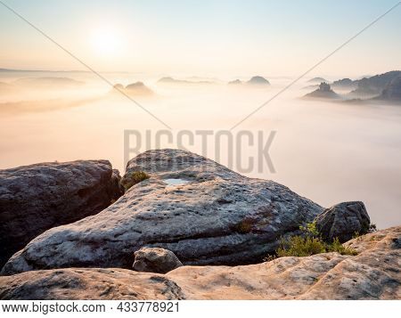 Landscape Misty Panorama. Deep Valley Full Of Pink Mist.  Fantastic Dreamy Sunrise Above Fairy Misty
