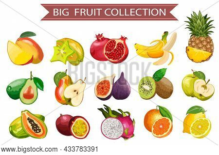 Big Vector Set Of Fruits.bright Fruits On A White Background In A Color Vector Illustration With Tex