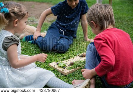 Three Children, Siblings, Sitting On A Green Grass Observing And Exploring Two Snails Crawling On Wo