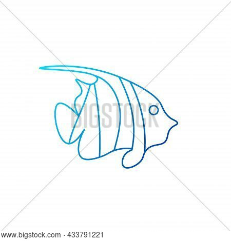 Zebra Angelfish Outline Icon. Marine Life. Maldives Diving. Blue Gradient Symbol. Isolated Vector St