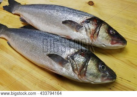 Fresh Atlantic Sea Bass On A Wooden Board To Make Fillet