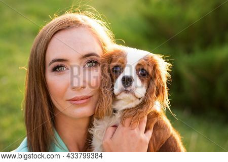 Closeup Portrait Breeder And Dog Pet. Puppy Cavalier King Charles Spaniel Poses And Walk With Owner