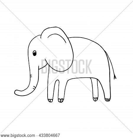 Elephant Hand Drawn Doodle. Vector, Scandinavian, Nordic, Monochrome, Minimalism. Cute Kids Print St