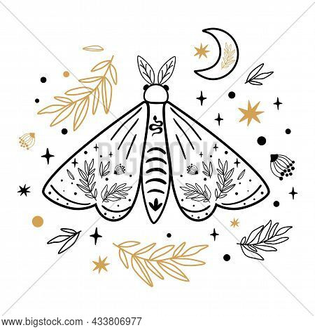 Moth Isolated On White. Celestial Moth. Hand Drawn Butterfly, Moon, Stars, Floral Branches. Moths Ta