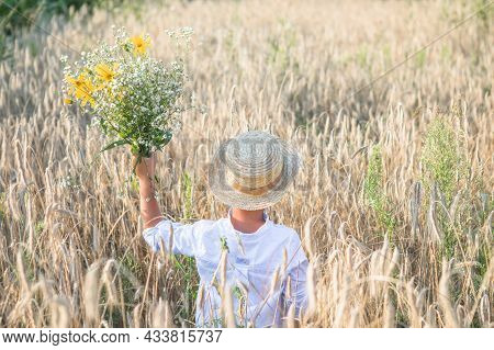 Back View On Cute Kid Boy In Straw Hat With Daisies In Hands Walking On Rye Field And Watching Into