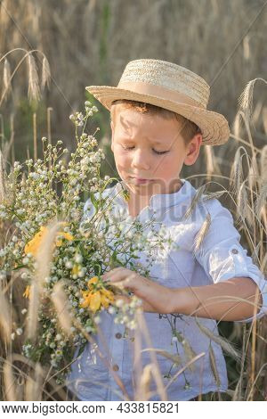 Portrait Child. Little Boy On A Wheat Field In The Sunlight Over Sunset Sky Background. Fresh Air, E