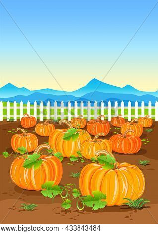 Vector Illustration Of A Harvest Pumpkin In A Vegetable Garden Near A White Fence. Happy Thanksgivin