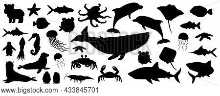 Big Set Of Black White Silhouette Isolated Sea Ocean North Animals. Doodle Vector Whale, Dolphin, Sh