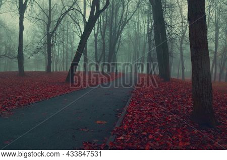 Halloween landscape, autumn landscape with Halloween mood, mysterious autumn alley in the fog Foggy autumn park in cloudy October day, autumn park in the fog