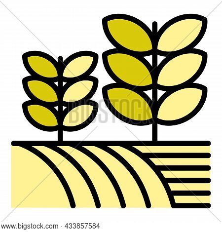 Plants On Farm Field Icon. Outline Plants On Farm Field Vector Icon Color Flat Isolated