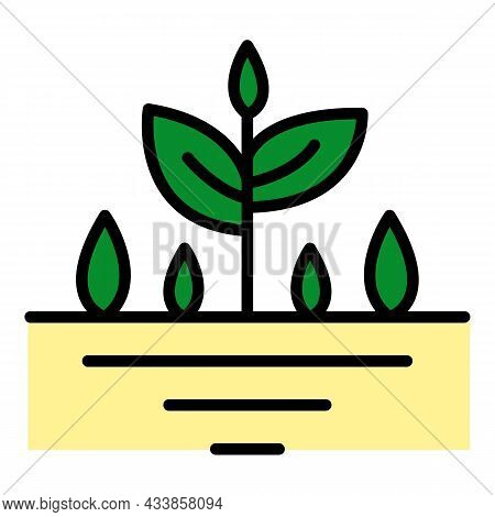 Plant In Ground Icon. Outline Plant In Ground Vector Icon Color Flat Isolated