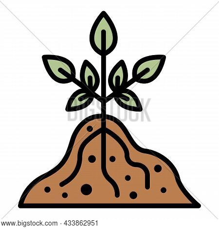 Root Plant Icon. Outline Root Plant Vector Icon Color Flat Isolated