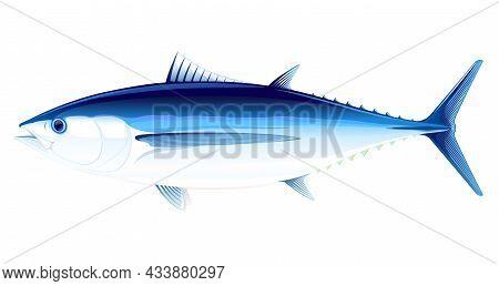 Albacore Tuna Fish In Side View Realistic Illustration