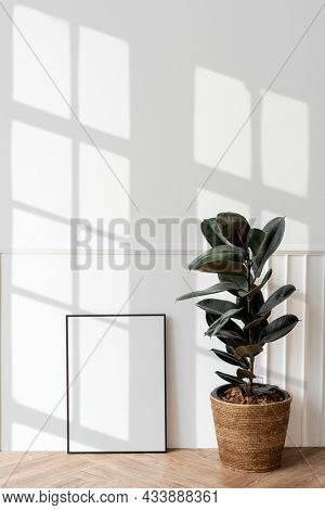 Picture frame by a rubber plant on a wooden floor