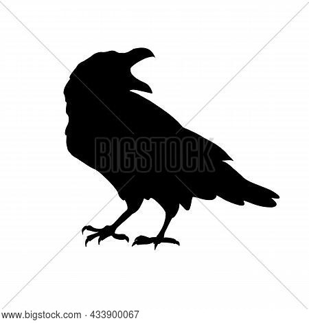 Black Raven Or Crow. The Silhouette Of A Bird On A White Background. The Symbol Of Halloween And The