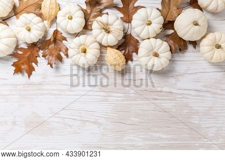 Happy thanksgiving - background with white pumpkins and autumn leaves on white wooden background