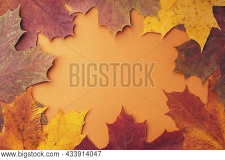 Frame Made Of Different Dried Maple Leaves On An Orange Background, Flat, Flat, Top View, Copy Space