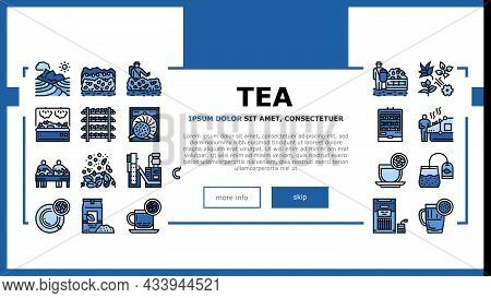 Tea Drink Production Landing Web Page Header Banner Template Vector. Growth Of Tea On Plantation And