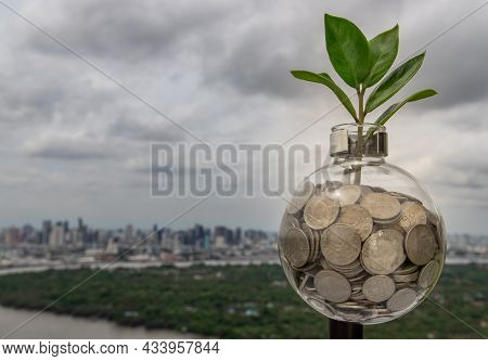 The Saplings That Grow On The Pile Of Coins In A Glass Bottle On Cityscape Background Symbol For Bus