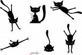 vector set of pictures with black cats and funny mice poster
