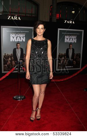LOS ANGELES - NOV 3:  Cobie Smulders at the