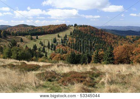 Autumn in Maple Mountains (Javorniky)