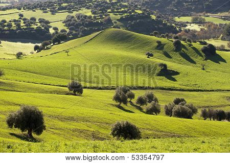 country landscape in sicily