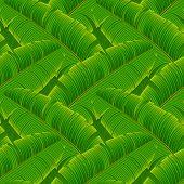 Tropical banana leaves seamless pattern