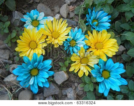 Alphabet Letter N in Blue and Yellow Flowers