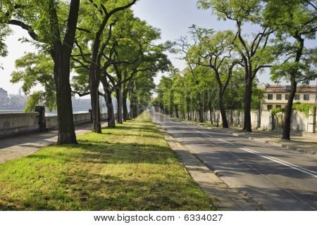 Podgorska Street