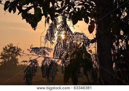 Buriram in the Morning