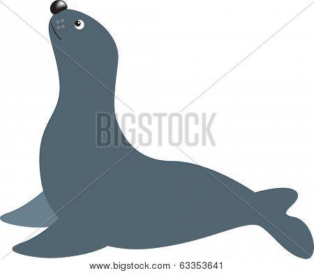 seal or sea lion cartoon illustration on white