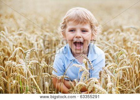 Preschool Boy Of 3 Having Fun In Wheat Field In Summer