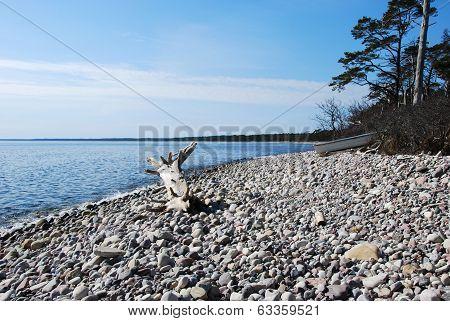 Stony Bay With Driftwood.