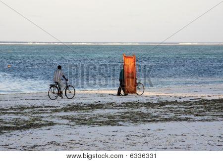 Two Indigenes Of Zanzibar Riding Bicycles Alongside Sandy Tropical Beach