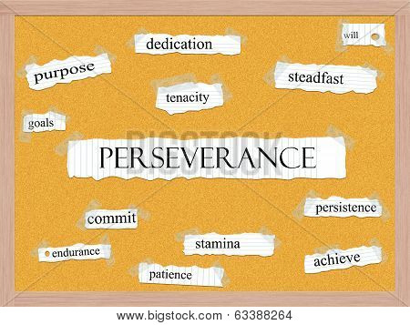 Perseverance Corkboard Word Concept