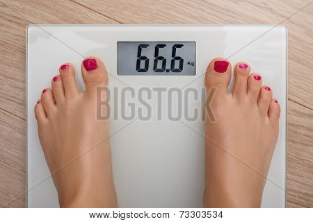 Bathroom Scale 666