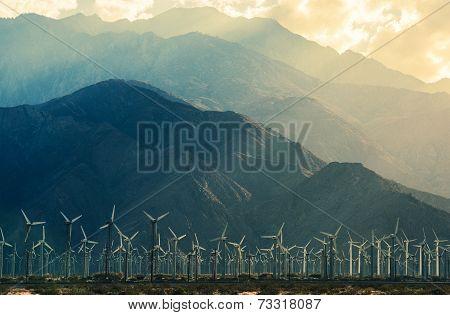 California Desert Wind Turbines in Coachella Valley. Scenic Mountains and Sun Light. California United States. poster